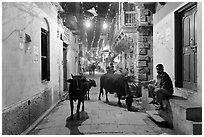 Cows in narrow old city street at night. Varanasi, Uttar Pradesh, India (black and white)