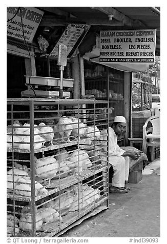 Chicken vendor, Colaba Market. Mumbai, Maharashtra, India (black and white)