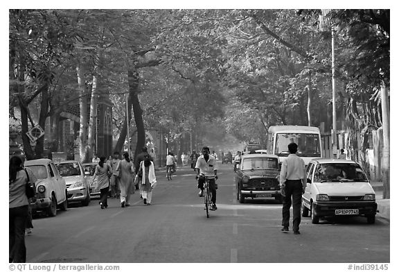 Tree-lined street, Colaba. Mumbai, Maharashtra, India (black and white)