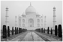 Taj Mahal reflected in watercourse,  sunrise. Agra, Uttar Pradesh, India (black and white)