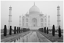 Taj Mahal, charbagh gardens, and watercourse, sunrise. Agra, Uttar Pradesh, India (black and white)