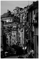 Main street, Riomaggiore. Cinque Terre, Liguria, Italy (black and white)