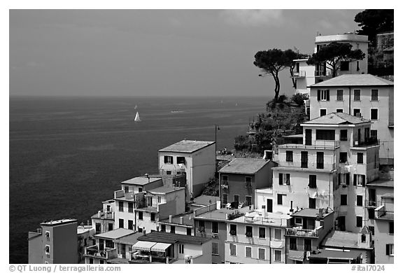Houses built on the sides of steep hills overlook the Mediterranean, Riomaggiore. Cinque Terre, Liguria, Italy (black and white)