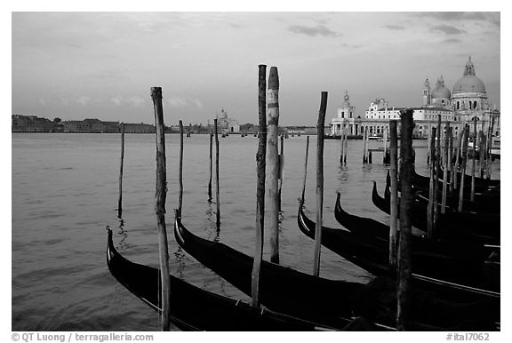Moored Gondolas, Canale della Guidecca, Santa Maria della Salute church at sunrise. Venice, Veneto, Italy (black and white)