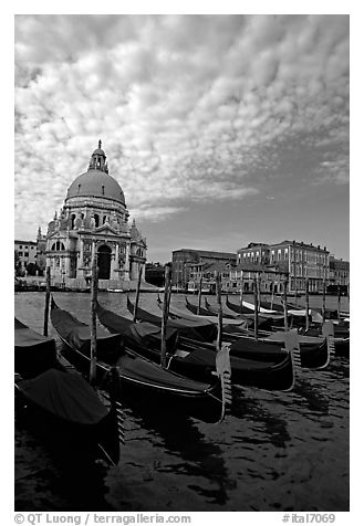 Gondolas, Grand Canal, Santa Maria della Salute church, morning. Venice, Veneto, Italy (black and white)