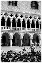 Boy feeding the pigeons in fron tof the Palazzo Ducale,  Piazza San Marco (Square Saint Mark), mid-day. Venice, Veneto, Italy ( black and white)
