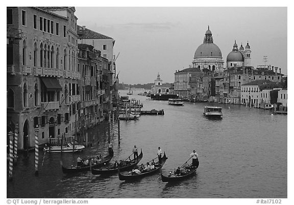 Black and white picture photo gondolas grand canal santa maria della salute church from the academy bridge sunset venice veneto italy