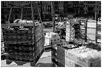 Delivery of fresh produce from the Grand Canal. Venice, Veneto, Italy ( black and white)