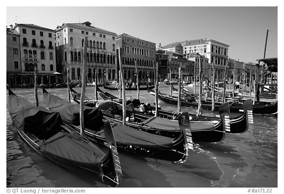 Row of gondolas covered with blue tarps, the Grand Canal. Venice, Veneto, Italy (black and white)