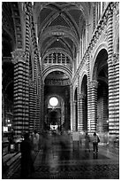Inside of the Siena Cathedral (Duomo). Siena, Tuscany, Italy ( black and white)