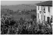 Gardens and countryside on the periphery of the town. San Gimignano, Tuscany, Italy (black and white)