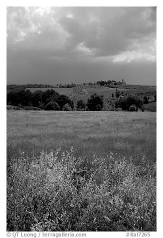 Field and distant village under storm skies. Tuscany, Italy (black and white)