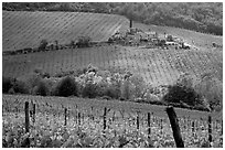 Grape rows, Chianti vineyard and village. Tuscany, Italy ( black and white)