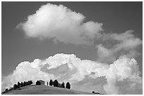Fluffy clouds above ridge with cypress trees and house. Tuscany, Italy ( black and white)