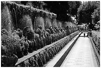 Alley lined with fountains, Villa d'Este. Tivoli, Lazio, Italy (black and white)