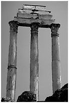Casa delle Vestali (House of the Vestal Virgins), Roman Forum. Rome, Lazio, Italy (black and white)