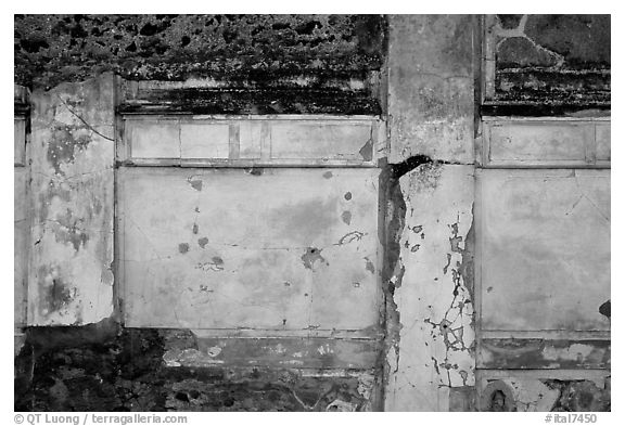 Wall detail. Pompeii, Campania, Italy (black and white)
