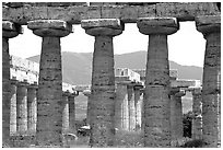 Basilica, or Temple of Hera (mid 6th century BC). Campania, Italy ( black and white)