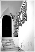 Door, red flowers, white walls, Positano. Amalfi Coast, Campania, Italy (black and white)