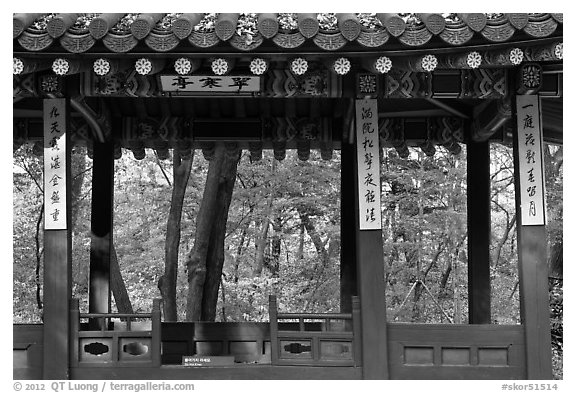 Gazebo in autumn, Ongnyucheong, Changdeokgung gardens,. Seoul, South Korea (black and white)