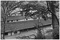 Fall foliage and tile rooftops, Yeongyeong-dang, Changdeokgung Palace. Seoul, South Korea (black and white)