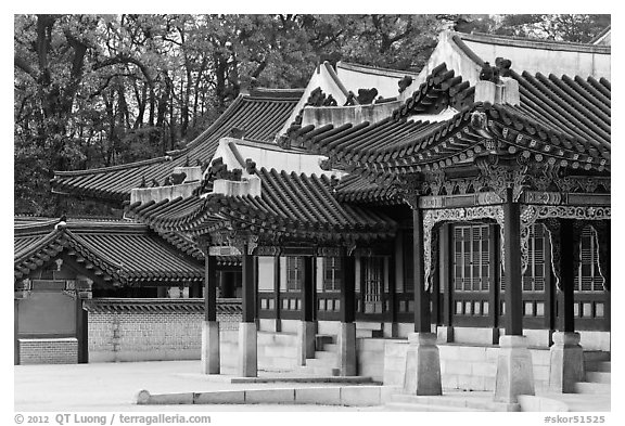 Huijeong-Dang, Changdeok Palace. Seoul, South Korea (black and white)