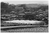 Fields, greenhouses, and village. Hahoe Folk Village, South Korea (black and white)