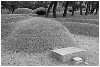 Burial mounds. Hahoe Folk Village, South Korea (black and white)
