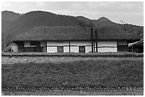 Straw roofed house. Hahoe Folk Village, South Korea ( black and white)