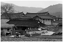 Villager tending to fields in front of ancient houses. Hahoe Folk Village, South Korea ( black and white)