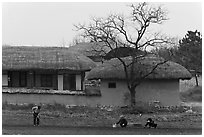 Villagers cultivating fields by hand in front of straw roofed houses. Hahoe Folk Village, South Korea (black and white)