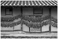 House wall with greens drying. Hahoe Folk Village, South Korea ( black and white)