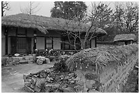 House and fence with straw roofing. Hahoe Folk Village, South Korea ( black and white)
