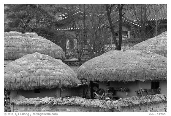 Straw roofing. Hahoe Folk Village, South Korea (black and white)