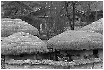 Straw roofing. Hahoe Folk Village, South Korea ( black and white)