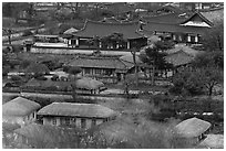 Houses seen from above. Hahoe Folk Village, South Korea ( black and white)