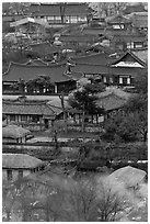 View from above. Hahoe Folk Village, South Korea ( black and white)