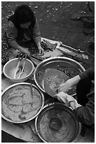 Kimchee preparation. Gyeongju, South Korea ( black and white)