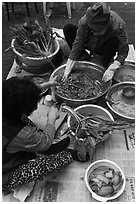 Women mixing traditional fermented kimchee. Gyeongju, South Korea ( black and white)