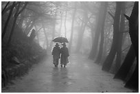 Nuns walking with unbrella on foggy path, Seokguram. Gyeongju, South Korea (black and white)