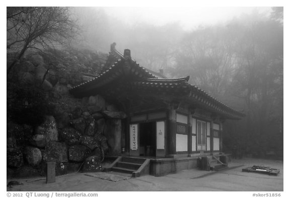 Grotto entrance pavilion in fog, Seokguram. Gyeongju, South Korea (black and white)
