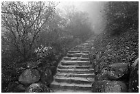 Stone stairs in fog, Seokguram. Gyeongju, South Korea ( black and white)