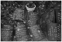 Multilingual well-wishing tablets, Seokguram. Gyeongju, South Korea (black and white)
