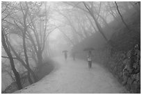 Tourist walking in fog, Seokguram. Gyeongju, South Korea ( black and white)