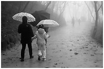 Family walking on misty path, Seokguram. Gyeongju, South Korea ( black and white)