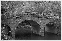 Stone bridge and fall colors, Bulguk-sa. Gyeongju, South Korea ( black and white)