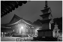 Seokgatap, Dabotap, and Daeungjeon at night, Bulguksa. Gyeongju, South Korea ( black and white)