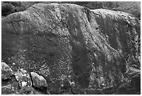Yukjonbul carved on rock surface, Mt Namsan. Gyeongju, South Korea ( black and white)