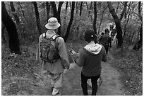 Monk and hikers on trail, Namsan Mountain. Gyeongju, South Korea ( black and white)
