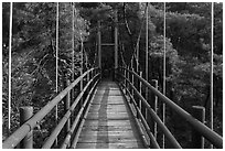 Suspension bridge, Namsan Mountain. Gyeongju, South Korea ( black and white)